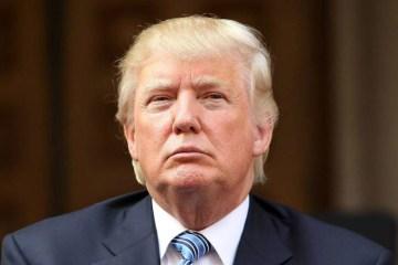 Donald Trump Buffoon