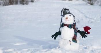 snow_eye_r