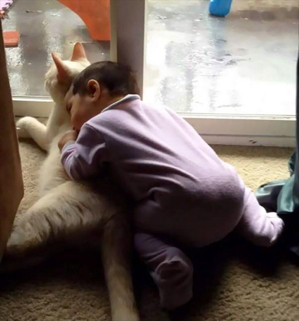 catgirl-3_r