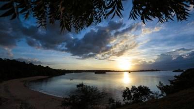Free Images : landscape, sea, coast, tree, nature, ocean, horizon, cloud, sky, sunrise, sunset ...