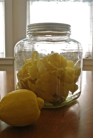 Lemon rinds in jar to make limoncello