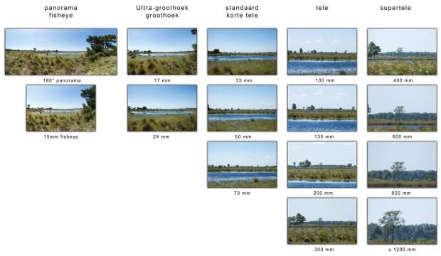 Een kleine trilling van de camera kan zich vertalen tot een flinke beweging van de boom op de horizon. Stel dat die trilling een beweging van 2 meter op de plek van de boom is, zal dit alleen zichtbaar worden als de boom groot genoeg in beeld is. Bij groothoek zal die beweging niet zichtbaar zijn, maar met een tele objectief zal die beweging zichtbaar worden.