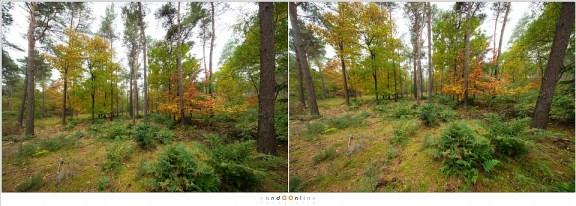 Zo lang de camera horizontaal gehouden wordt is er niets aan de hand. Als je de camera naar boven of beneden richt, dan gaan de verticale lijnen schuin lopen.