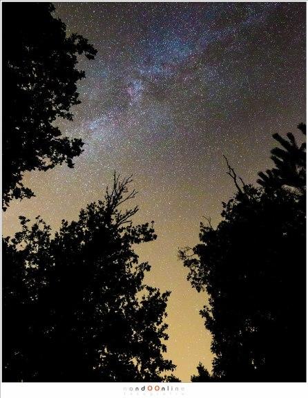 De Melkweg tussen de bomen door (ISO6400 - f/4 - 30sec - 17mm brandpunt)