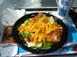 Pretty Crispy Ken Mcdonald S Southwest Salad No Ken Mcdonalds Southwest Salad By Mcdonalds Southwest Salad Lunch Lisa Stephens Flickr Mcdonald S Southwest Salad