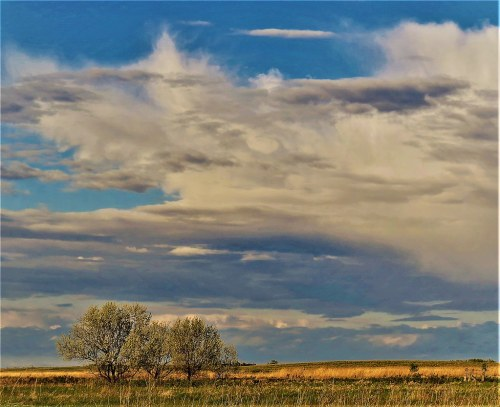 Rummy Prairie Landscape By Prairie Landscape By Prairie Landscape Dawson North Dakota Usa Mike Pedigo Flickr North Dakota Landscape Images North South Dakota Landscape