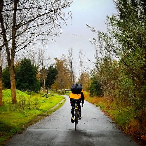Feels like autumn in San Jose   #monday #cycling #commutebybike #commute