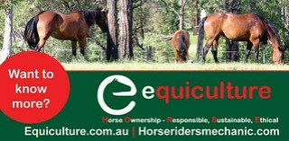 Equiculture Promotes Sustainable Horse Keeping