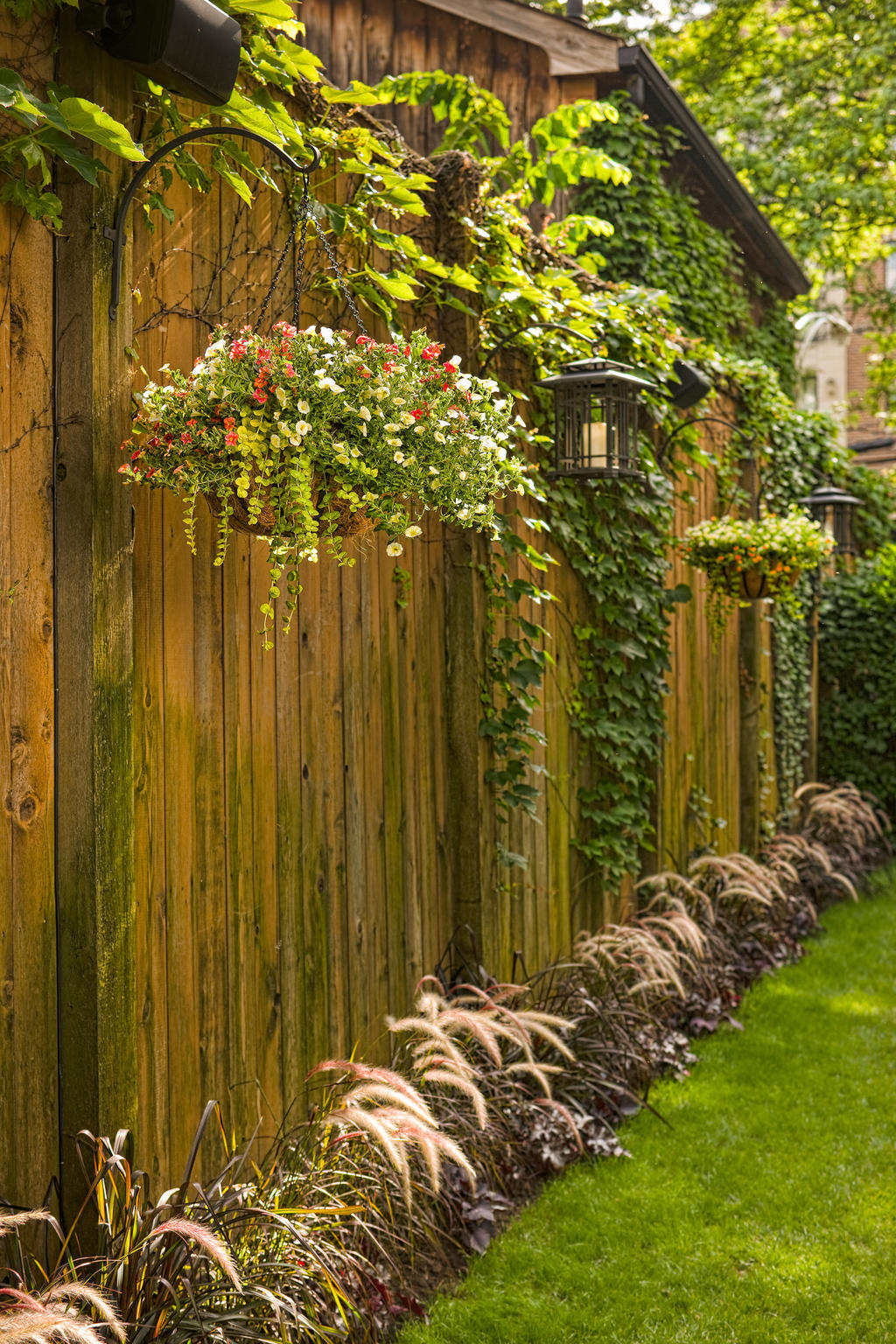 Dashing Temperatures Are You May Only Haveto Hope Here Are A Few More Tips On Watering Hanging Early Spring Whenyour Plants Are Smaller Hanging Baskets Proven Winners garden Fence Hanging Garden