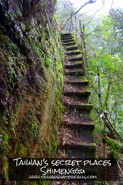 It isn't easy to reach Shimenggu (Taiwan) but you will be rewarded with a waterfall, giant cypress trees, a 500+ meter deep valley, a mossy forest, little pools in the creek, a bamboo forest and a great trail.