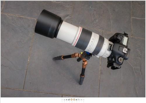 Canon EOS 7D mark II met een EF100-400mm f/4-5,6L IS II op de 3LT EVO3 Vyv