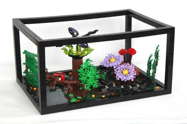Insect Terrarium