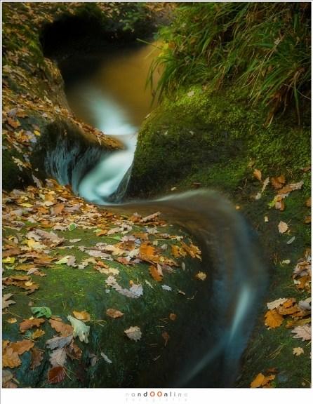 Het water lijkt bijna een levend wezen, machtig en onstuitbaar, zoekend naar een uitweg in de rotsen die dit bos domineren. (55mm, f/11, ISO100, 25sec)