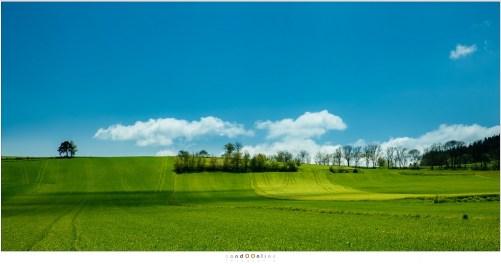 Uitgestrekte landschappen zijn kenmerkend voor dit deel van de Auvergne. Pitoreske dorpen en uitgestrekte naaldbossen wisselen het landschap af.