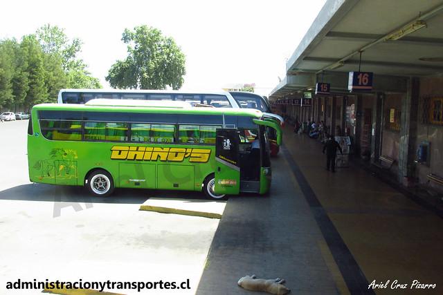 Terminal de Buses Los Andes