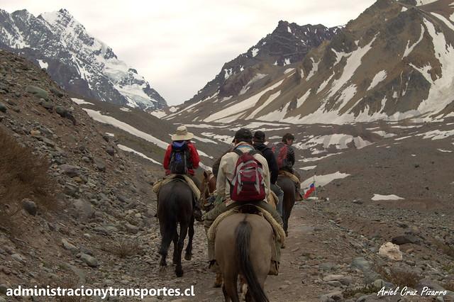 Caballos en Cordillera de los Andes (Chile)