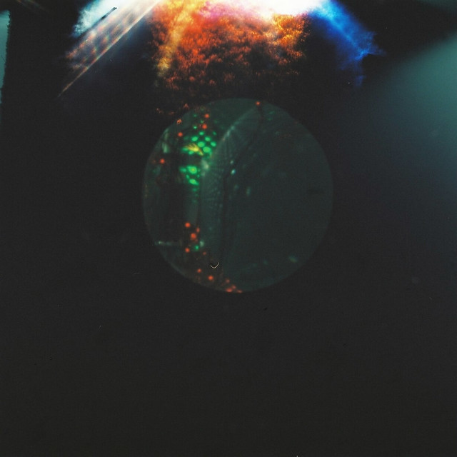Orbs Through Holes #Pinhole #WPPD (7 of 9)