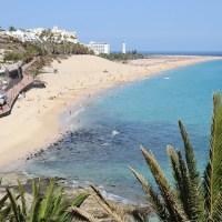 Happy Canary Islands Day (OneTravel)