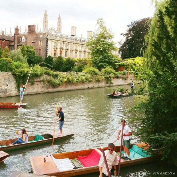 What a summer - Cambridge 2