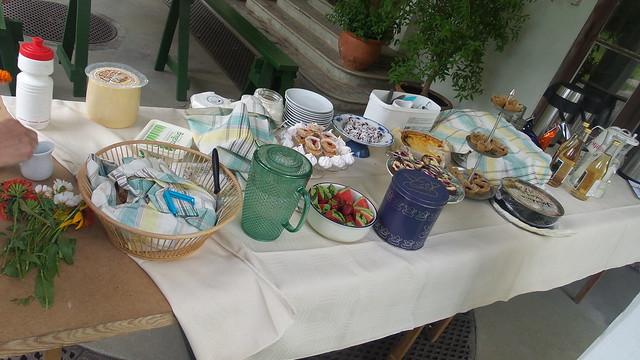 Julita picknick (1)