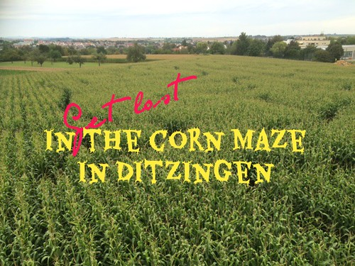 read more about the corn maze in Ditzingen