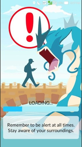 Pokemon Go Loading Screen
