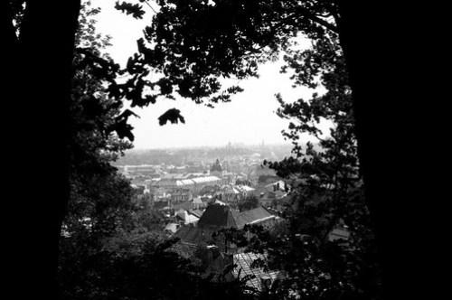 miasto view