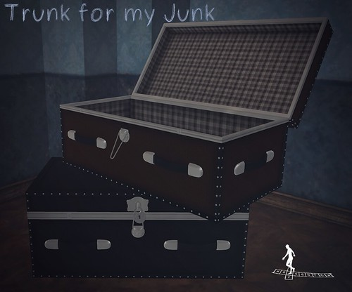 Trunk for my Junk