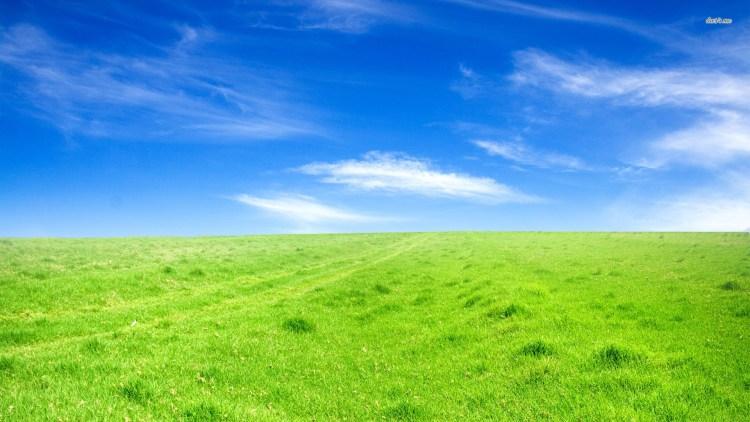 Best-Green-Field