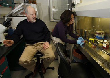 Brown University associate professor Jeffrey R. Morgan (above, with student Toni-Marie Ferruccio) has designed a 3-D honeycomb-like mold that holds artificial clusters of cells and reduces the need for animals for research in the lab.