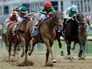 Animal Kingdom winning Derby