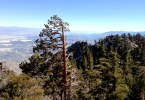Mt. San Jacinto views