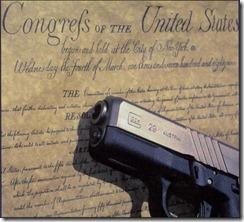 second_amendment