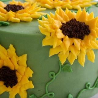 Sunflower cake close up