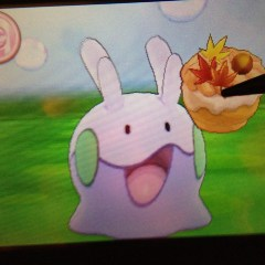 Goomy is excited!