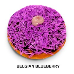 Belgian-Blueberry (2)