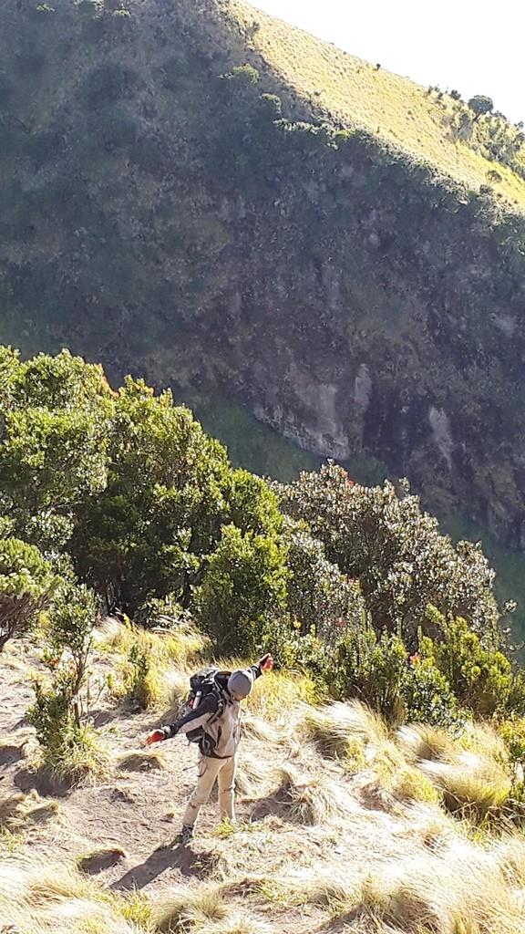 angin dan rerumputan lereng gunung merbabu, sangat segar dan menyejukkan