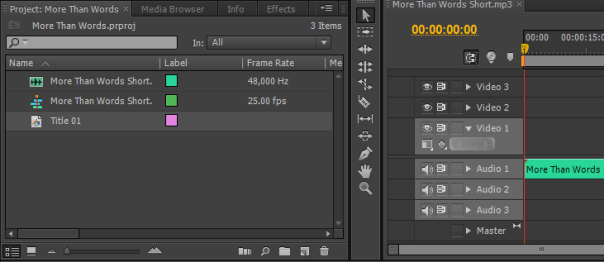 Adobe Premiere How to Add Title, create title window