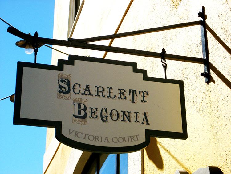 Scarlett-Bogonia