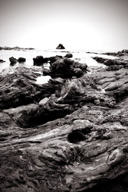 Black and white tidepools 682x1024