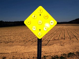Big Yellow Sign