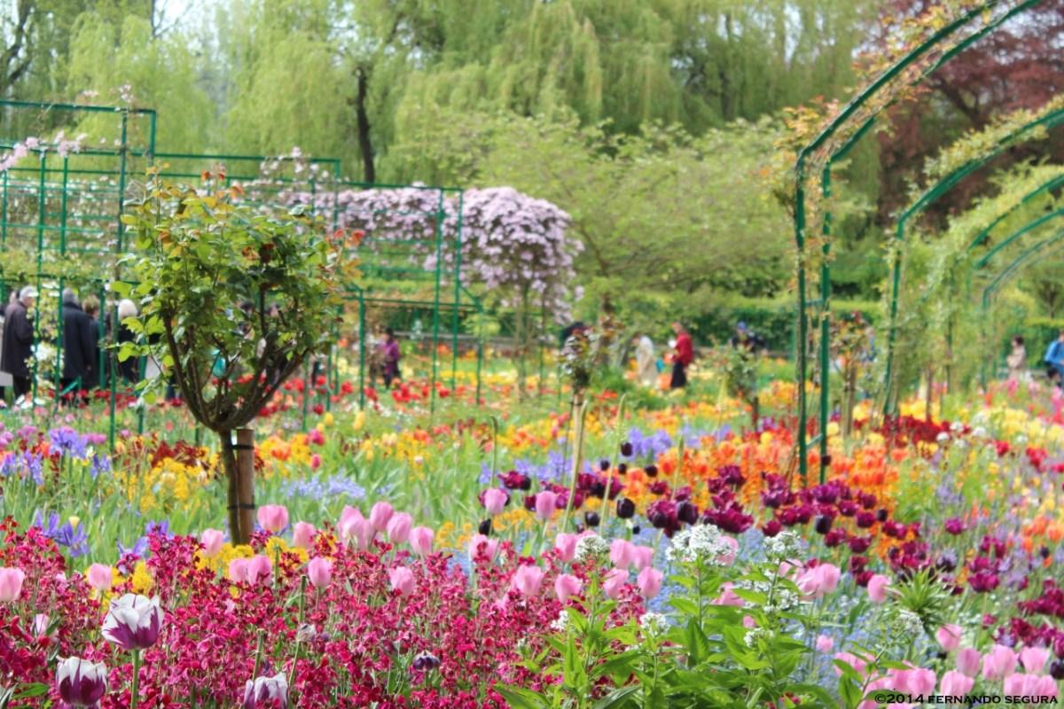 Encante-se nos Jardins de Monet