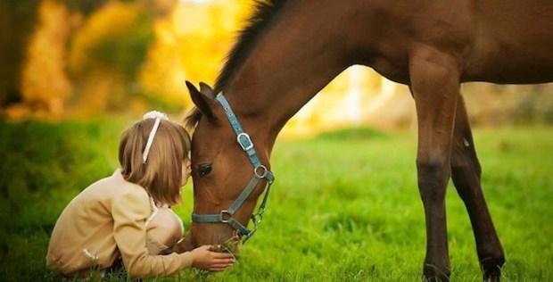 bambino_cavallo