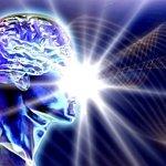 """LA DINAMICA DEL CERVELLO SECONDO UNA VISIONE """" SPIRITUALE""""  ( da leggere)"""