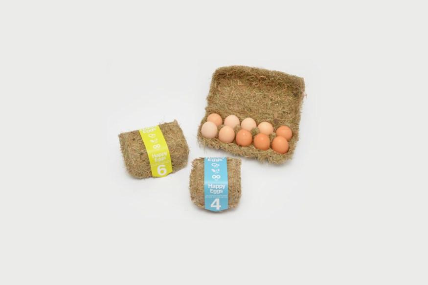 happy-eggs-6