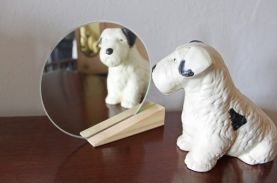 on_the_edge_mirror_with_dog