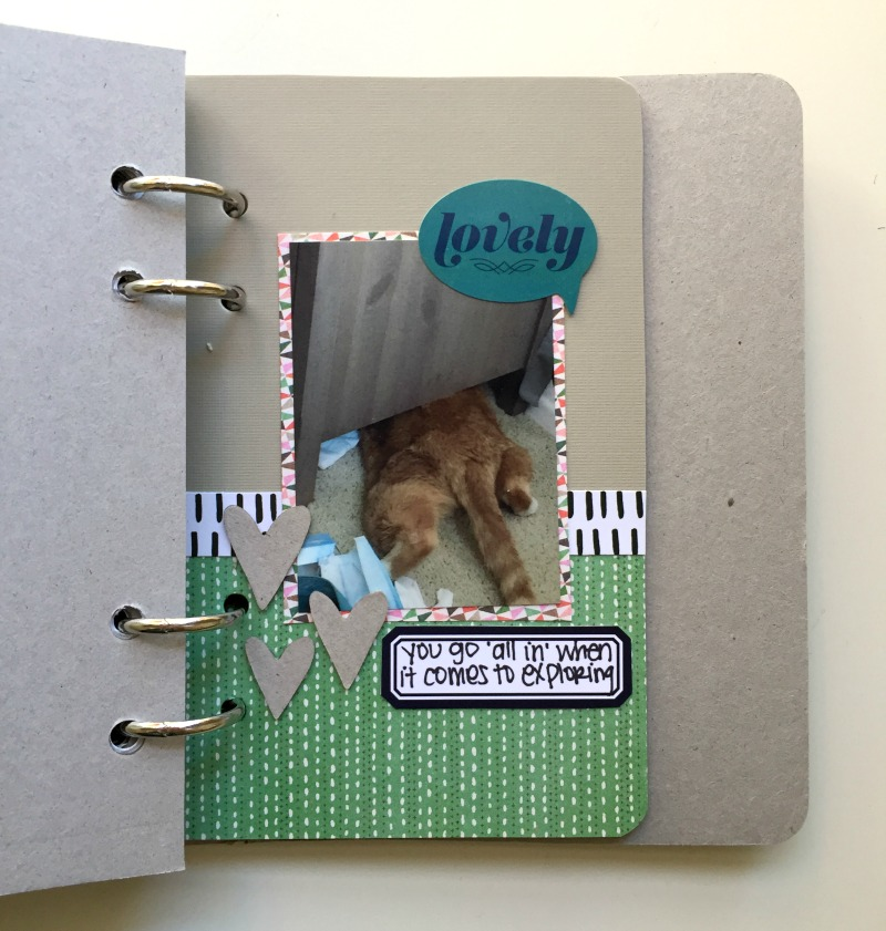 10 Things I Love About My Cat - Mini Scrapbook Album by Kam of Campfire Chic