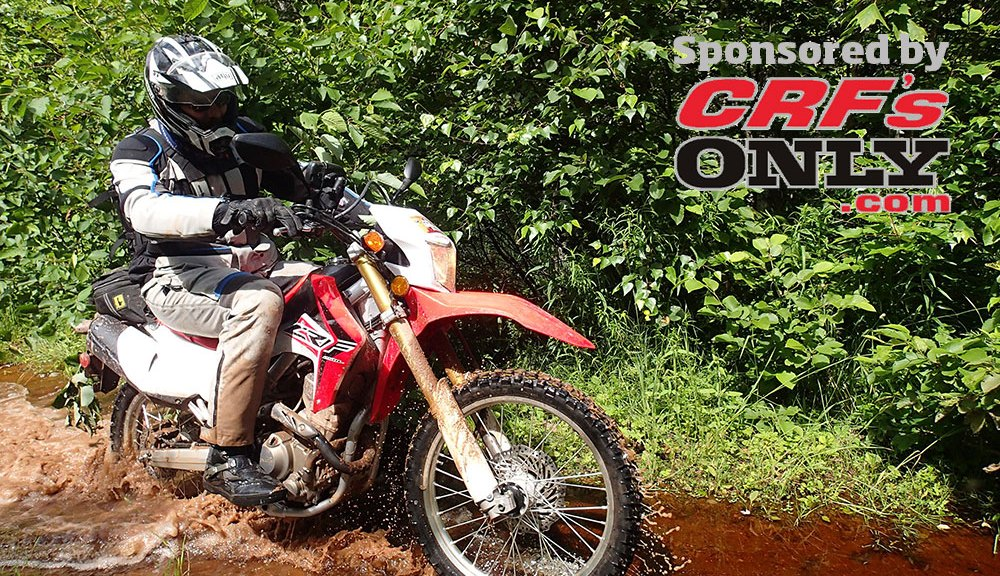 CRF250L-water-feature