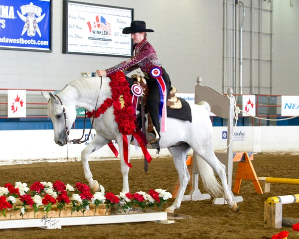 Lorraine Prowse and Jayded Moon in the AOTR Trail class at the 2012 Canadian Nationals.