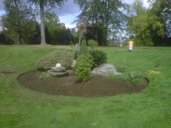 Landscaping Project After Thinning Out- extra money